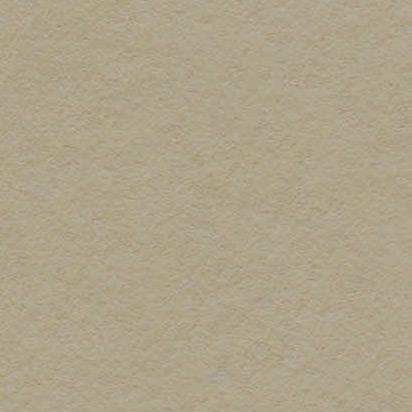 Keaykolour Lichen